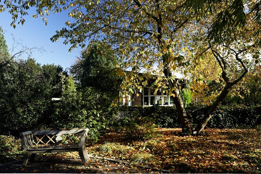 Loki Schmidt Garten In Hamburg Ehemals Neuer Botanischer Garten