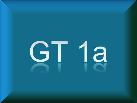 GT1a / BSB