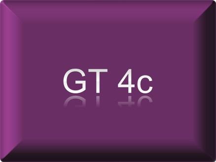 GT4c / BSB