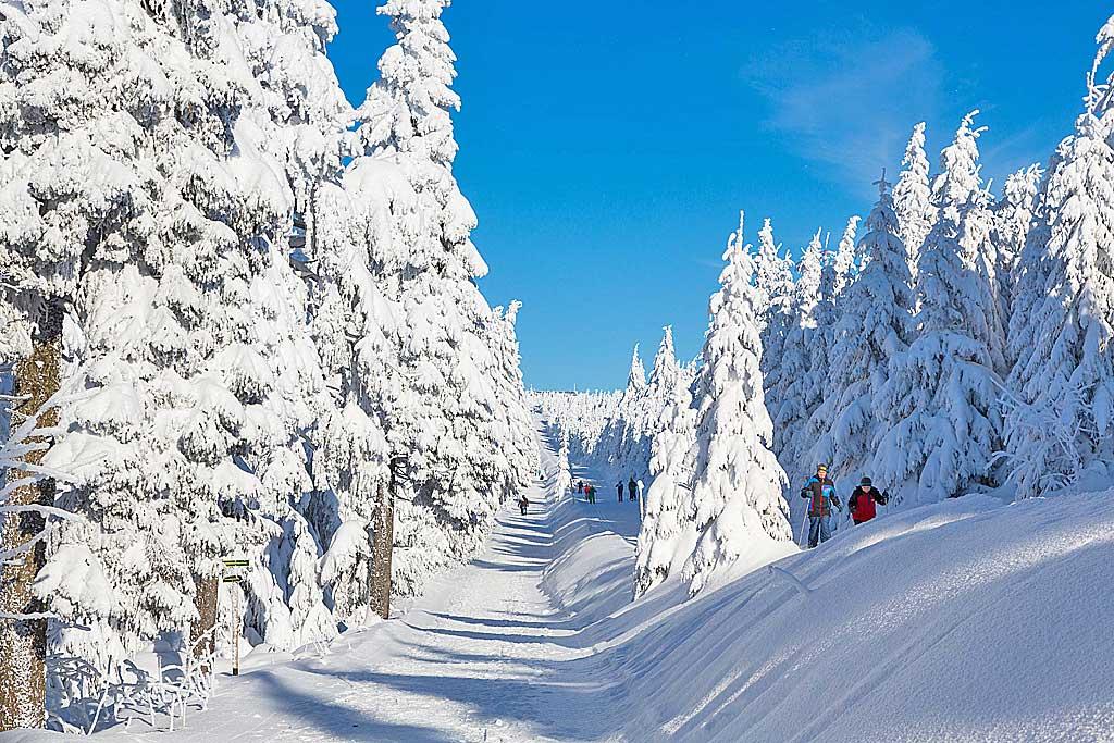 winter quad tour harz