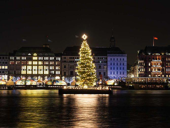 Weihnachtsbilder Hamburg.Alstertanne Hamburg De