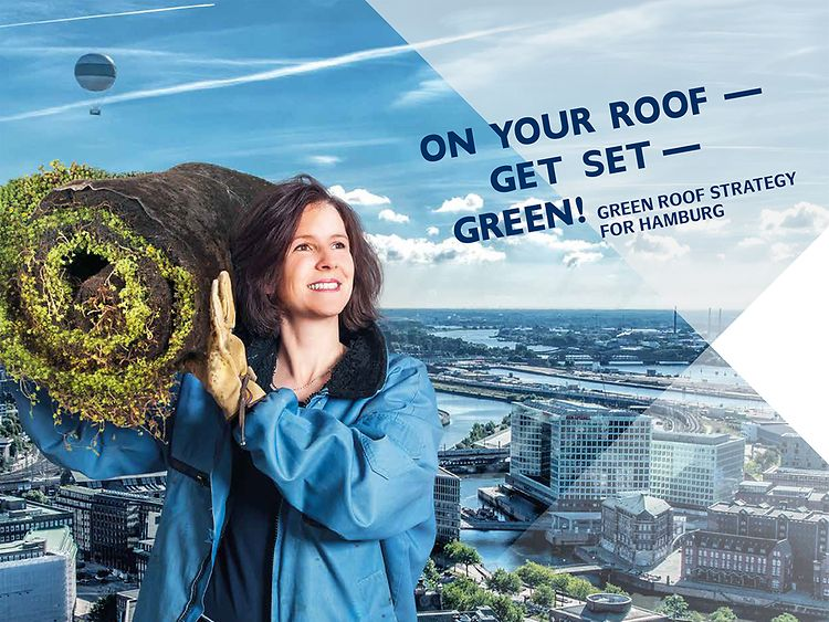 More Green Roofs for Hamburg