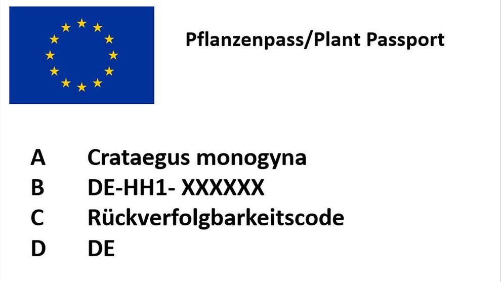 Faqs Pflanzenpass Neu Pflanzenschutzdienst