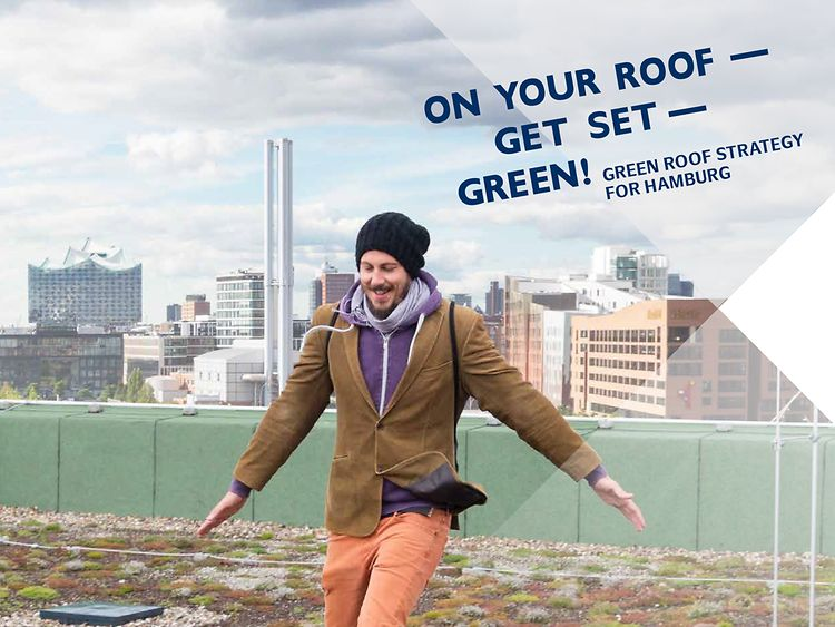 Green Roofs: Guidelines for Planning