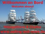 Sedov / Sailing & More