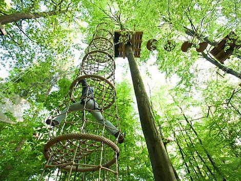 Klettern im Wald 6 / Patrick Schwalb