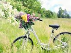Fahrrad mit Blumen im Korb auf Wiese