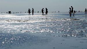 Wattwandern an der Nordsee / imago stock & people