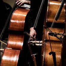 Drei Cellos in Nahaufnahme